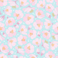Seamless Background With Apple Blossom Stock Photo - 24266330