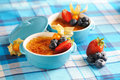Creme Brulee (cream Brulee, Burnt Cream) Royalty Free Stock Photos - 24281168