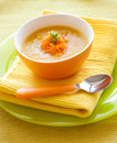 Pumpkin Soup Royalty Free Stock Images - 24289269