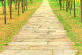 Ancient Stone Path In Garden Royalty Free Stock Images - 24307339