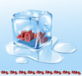 Ice Cube And Water Royalty Free Stock Photography - 24309007