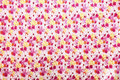 Colorful Flower Texture Stock Photography - 24320182