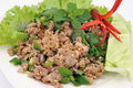 Thai Spicy Minced Meat Salad Royalty Free Stock Photos - 24335798
