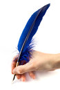 Blue Quill Pen Royalty Free Stock Photos - 24359048
