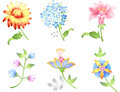 Flower Branches Set Stock Photography - 24359322