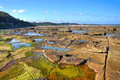 Low Tide Stock Image - 24395411