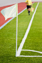 Soccer Linesman Royalty Free Stock Photo - 24395775