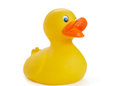 Rubber Duck Royalty Free Stock Photo - 24401195