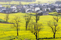 Beautiful Spring Rural Landscape Stock Images - 24486624