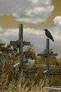 Crosses And Raven Stock Photography - 2454292