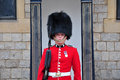 Portrait Of Royal Guard Royalty Free Stock Photos - 24527758