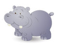 Cute Hippo Stock Photography - 24559692