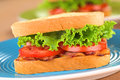 BLT Sandwich Royalty Free Stock Photos - 24597998