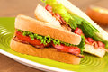 BLT Sandwich Royalty Free Stock Photography - 24598057