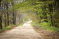 Country Road In Springtime Stock Photos - 24606923