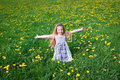 Girl On Dandelion Meadow Royalty Free Stock Image - 24608516