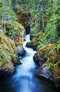 Little Qualicum Falls Provincial Park Stock Photo - 24615160