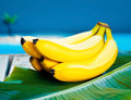 Bunch Of Ripe Yellow Bananas Royalty Free Stock Photos - 24631318