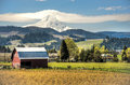 Red Barn, Apple Orchards, Mt. Hood Stock Image - 24641381