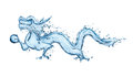 Water Dragon Royalty Free Stock Images - 24642029