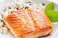 Grilled Salmon Stock Image - 24692861