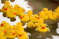 Rubber Duck Royalty Free Stock Images - 2474099