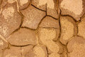 Cracked Terrain Texture Royalty Free Stock Photography - 24703447