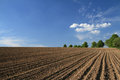 Plowed Field Royalty Free Stock Images - 24705489