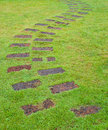 Stone Path With Green Grass Royalty Free Stock Photo - 24711155