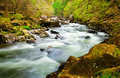 Fast Flowing River Royalty Free Stock Photography - 24720207