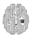 Motherboard Brain Royalty Free Stock Photography - 24745317