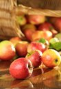 Basket Of Apples On A Wet Table Stock Photography - 24749192