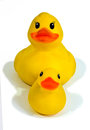 Rubber Duck And Duckling Royalty Free Stock Photography - 24778497