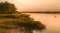 Golden Sunset Over Calm Lake With Swan Stock Photography - 24794112