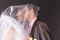 Happy Bride And Groom Kissing Under The Veil Royalty Free Stock Photos - 24826928