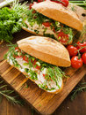 Sandwiches Royalty Free Stock Image - 24849776