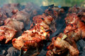 Meat On The Grill Royalty Free Stock Photo - 24884785