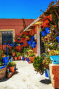Flowers In Flowerpot On The Walls On Streets Royalty Free Stock Image - 24884966