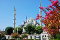 The Blue Mosque, Istanbul Stock Image - 24893871