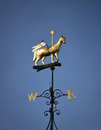 Wind Vane Royalty Free Stock Photo - 24903165