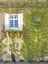 Wall With Window And Ivy, Arles France Stock Image - 25003351