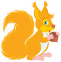 Squirrel Stock Photography - 25009542