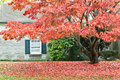 Autumn Season - Family House With Front Yard Royalty Free Stock Images - 25018119