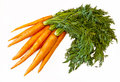 Fresh Carrots Royalty Free Stock Photo - 25040685