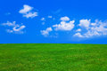 Grass And Cloudy Sky Royalty Free Stock Image - 25087196