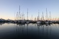 Cannes Port Royalty Free Stock Image - 25087586
