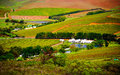 Cape Town - Wineyards Royalty Free Stock Images - 25167599