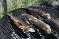 Fish On Grill Stock Image - 25176561