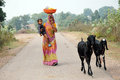 Village Life In India Royalty Free Stock Images - 25179399