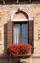 Red Flowers In A Window Box Stock Image - 2528941